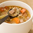 COMFORT FOOD ON CHILLED NIGHTS / Beef, Barley and Mushroom Soup from the old country – Number 2 in our Soup's On series