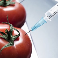 CMT / what it is and why it's a more immediate concern than GMO – part one of three